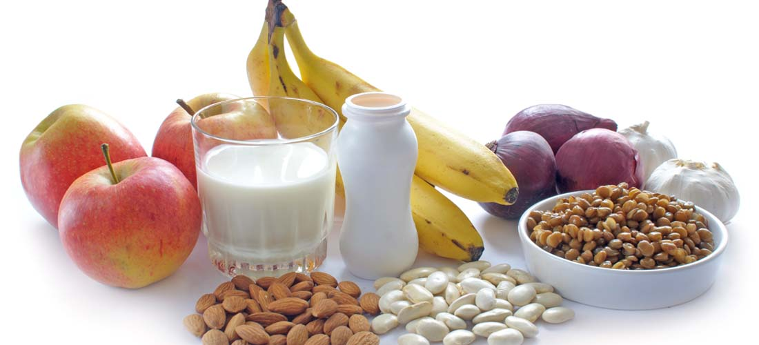 Prebiotics reduce body fat in overweight children img